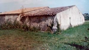 genutzt als Kelterhaus und Kuhstall